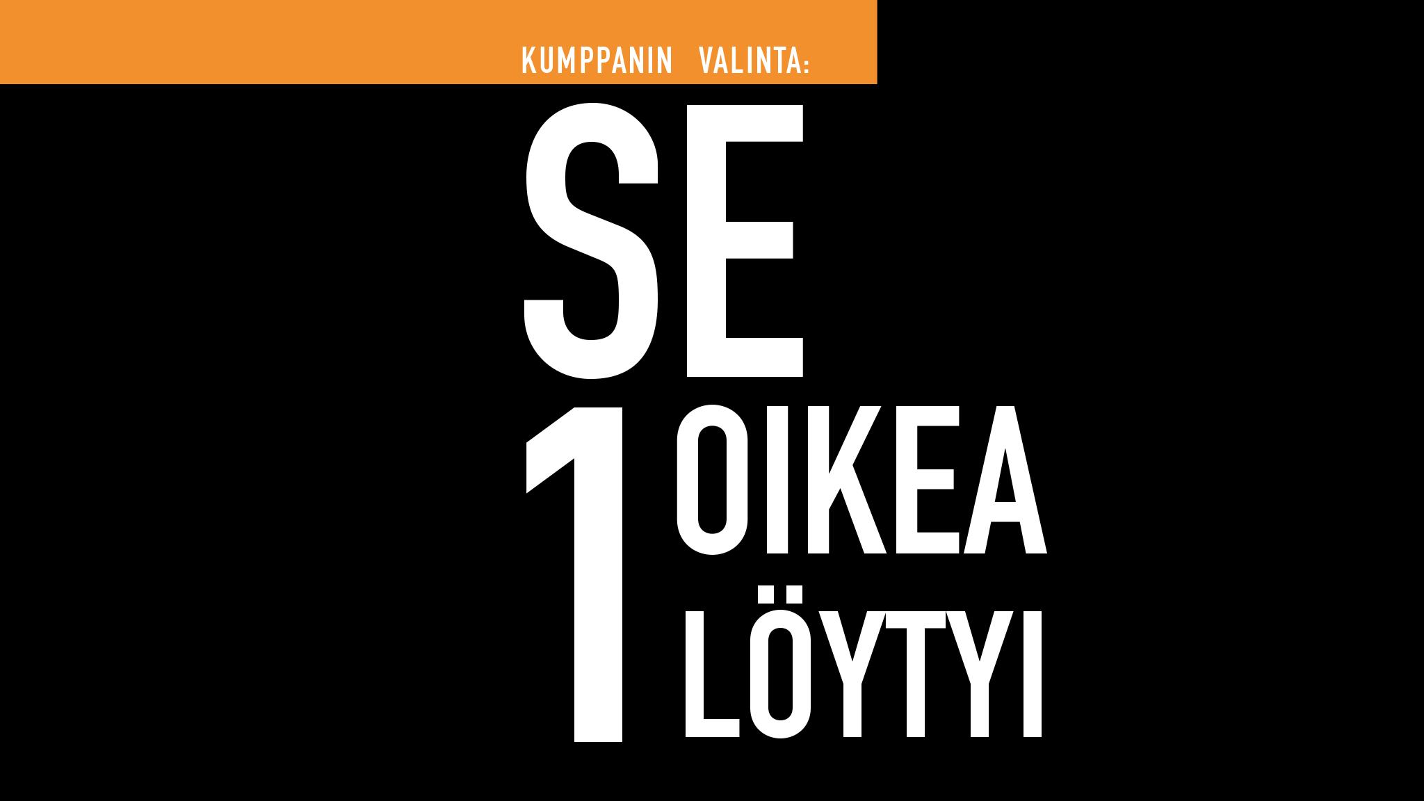 Kuvassa teksti: Kumppanin valinta: SE 1 OIKEA LÖYTYI